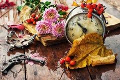 Uhr auf dem Hintergrund von gefallenen Blättern Lizenzfreie Stockfotografie