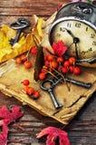 Uhr auf dem Hintergrund von gefallenen Blättern Stockfotos
