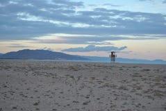 Uhr-Turm auf dem Strand Stockfotos