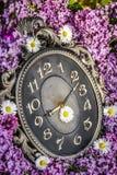 Uhr umgeben durch Frühlingsblumen Flache Schärfentiefe mit selektivem Fokus auf Uhr Lila Blumen Lizenzfreie Stockfotografie