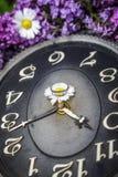 Uhr umgeben durch Frühlingsblumen Flache Schärfentiefe mit selektivem Fokus auf Uhr Lila Blumen Lizenzfreie Stockbilder