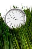 Uhr und grünes Gras Lizenzfreies Stockbild