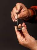 Uhrmacher, der eine alte Taschenuhr repariert Stockfoto