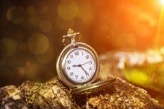 Uhrmedaillon auf dem hölzernen Stockfotos