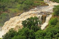 Uhuru Falls in Uganda. Uhuru Falls in Murchison Falls National Park , Uganda royalty free stock image