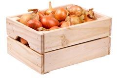 Uien in een doos Stock Fotografie