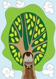 Uil in de boom vector illustratie