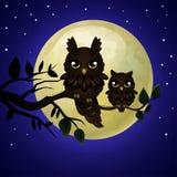 Uil en maan stock illustratie