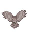 Uil. Het roofdier van de nacht Royalty-vrije Stock Afbeelding