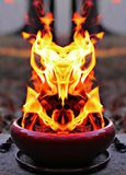 Uil van brand Royalty-vrije Stock Afbeelding