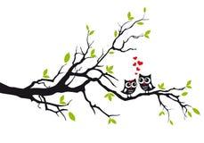 Uilen in liefde op boom, vector Stock Afbeelding
