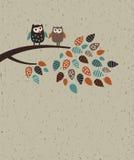 Uilfamilie en bladeren Stock Afbeelding