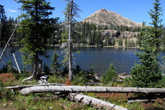 Uinta Mountains Stock Photos