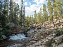Uinta Wasatch贮藏所国家森林,Mirror湖,犹他,美国,美国,在Slat湖和帕克附近 免版税库存照片