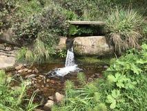 Uit de rots kwam het water royalty-vrije stock foto