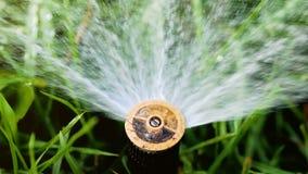 Uit de sprinkler op het groene gras besproeien van water sprinkler voor irrigatiesystemen stock video
