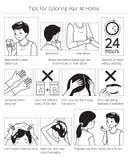 Uiteinden en Voorzorgsmaatregelen v3o3or gebruik Haarverf voor het Kleuren van Eigen Zwart-wit Haar thuis, stock illustratie
