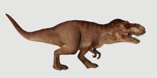 Uiterst gedetailleerde en realistische hoge die resolutie 3d illustratie van een Dinosaurus t-Rex op witte Achtergrond wordt geïs royalty-vrije illustratie