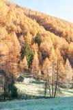 Uiterst klein chalet in de Italiaanse Alpen met een kleurrijk panorama royalty-vrije stock foto's
