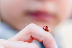 Uiterst klein lieveheersbeestje op kindvinger Royalty-vrije Stock Afbeeldingen