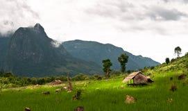 Uiterst klein plattelandshuisje in de wildernis Royalty-vrije Stock Afbeeldingen