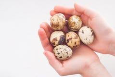 Uiterst kleine eieren in de handen van het kind Stock Afbeeldingen