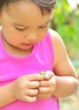 Uiterst kleine kikker op handen van een klein meisje in de zomer Stock Foto's