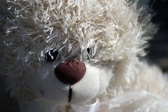 Uiterst kleine Teddy Stock Foto