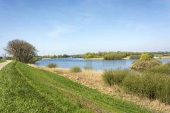 Uiterwaarden van de rivier Waal in de buurt van Zaltbommel, Nederland Een typisch Nederlands rivierlandschap stock afbeelding