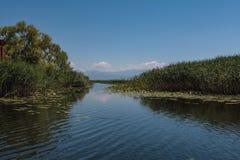 Uitgang van de baai aan Skadar-meer in Montenegro royalty-vrije stock foto's