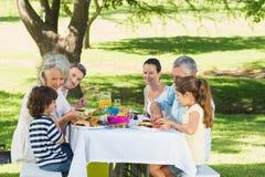 Uitgebreide familie die lunch in gazon hebben stock afbeeldingen