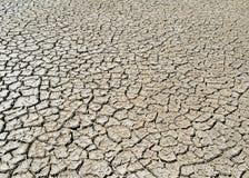 Uitgedroogde woestijngrond stock afbeelding
