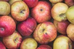 Uitgelezen appelen stock afbeelding
