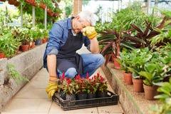 Uitgeputte tuinman in een serre royalty-vrije stock afbeelding