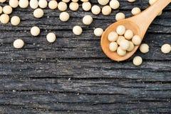 Uitgespreide sojabonen stock foto's