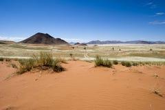 Uitgestrektheid in de woestijn van Namibië Royalty-vrije Stock Afbeelding