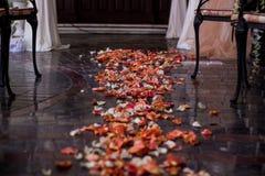 Uitgestrooid met roze bloemblaadjesspoor Stock Foto