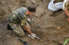Uitgravingen van begrafenis van militairen van de Tweede Wereldoorlog royalty-vrije stock foto