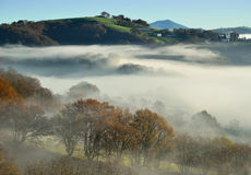 Uitlopers n de mist, Pays Basque Royalty-vrije Stock Foto's