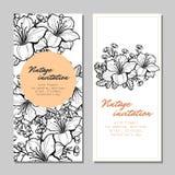 Uitnodiging met bloemenachtergrond Stock Fotografie