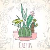Uitnodigingskaart van cactus in potten stock illustratie