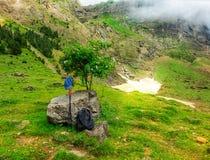 Uitrustingswandelaar Rugzakken, wandelstokken en GLB van een toerist in de bergen op een halt onder een boom stock foto