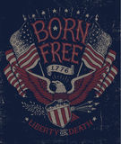 Uitstekend Americana Eagle Graphic Royalty-vrije Stock Afbeelding