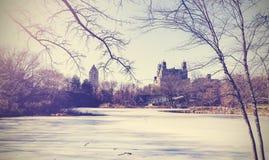 Uitstekend beeld van Central Parkmeer in de winter New York, de V Stock Foto's