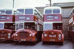 Uitstekend beeld van Schotse Bussen royalty-vrije stock fotografie