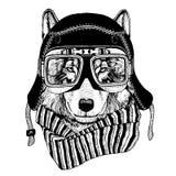 Uitstekend Beeld van WOLF voor t-shirtontwerp voor motorfiets, fiets, motor, autopedclub, aeroclub royalty-vrije illustratie