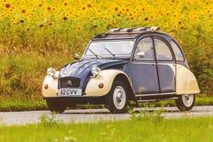 Uitstekend Citroën 2CV voor een gebied met bloeiende zonnebloemen Royalty-vrije Stock Afbeeldingen