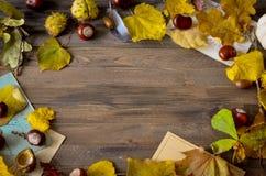Uitstekend de herfstkader met gele bladeren Hoogste meningspunt Stock Afbeelding