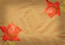 Uitstekend document met rode rozen Stock Foto
