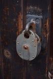 Uitstekend hangslot op oude deur Stock Foto's
